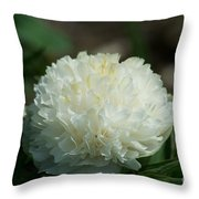 Potchen's Spring Throw Pillow