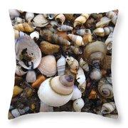 Potomac Shellscape Throw Pillow
