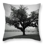 Potomac Tree Throw Pillow