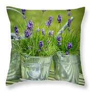 Pots Of Lavender Throw Pillow