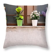 Potted Flowers 01 Throw Pillow by Rick Piper Photography