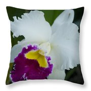 Potted Orchid Throw Pillow