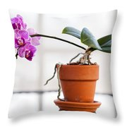 Potted Pink Orchid Throw Pillow