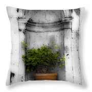 Potted Plant At Villa D'este Near Rome Italy Throw Pillow