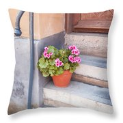 Potted Plant Front Of House Throw Pillow