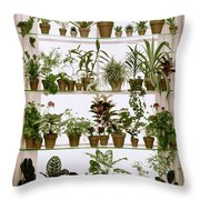 Potted Plants On Shelves Throw Pillow