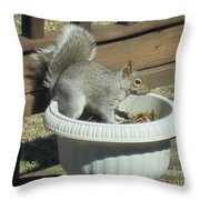 Potted Squirrel Throw Pillow