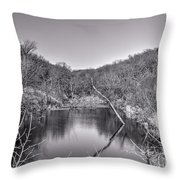 Pouders Pond 2 Throw Pillow