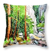 Poudre Canyon Beauty Throw Pillow