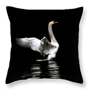 Power And Beauty Throw Pillow