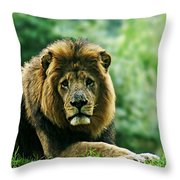 Power Starng Throw Pillow