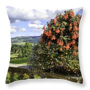 Powis Castle Terrace Throw Pillow