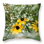 Prairie Colors Throw Pillow