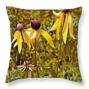 Prairie Coneflowers In Pipestone National Monument-minnesota  Throw Pillow