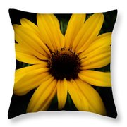 Prairie Coreopsis Throw Pillow