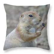 Prairie Dog Cleaning His Teeth Throw Pillow