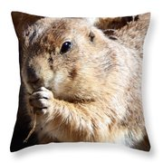 Prairie Dog Throw Pillow