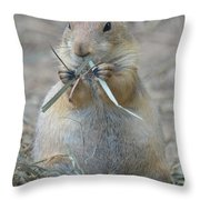 Prairie Dog Food Throw Pillow