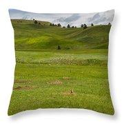 Prairie Dog Town Throw Pillow
