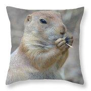 Prairie Dog Treat Throw Pillow