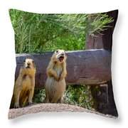 Prairie Dogs In Bryce Throw Pillow