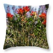 Prairie Fire Throw Pillow