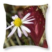 Prairie Flower And Red Lambs Quarter Throw Pillow