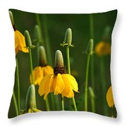 Prairie Flowers Throw Pillow