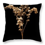 Prairie Life Number 3 Throw Pillow