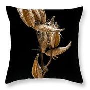 Prairie Milkweed Throw Pillow