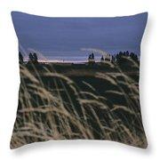 Prairie Morning Throw Pillow