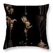 Prairie Plant Still Life Throw Pillow