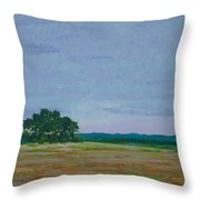 Prairie Preserve Throw Pillow