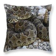 Prairie Rattlesnake South Dakota Badlands Throw Pillow