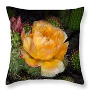 Prairie Rose II Throw Pillow