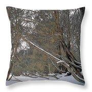 Prairie Winter 2 Throw Pillow