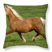 Prancing Pony Throw Pillow