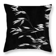Prarie Grass Throw Pillow