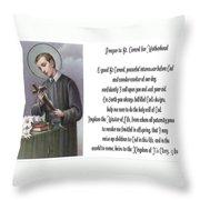 Prayer To St. Gerard For Motherhood Throw Pillow