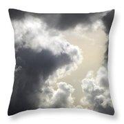 Praying For Rain Throw Pillow