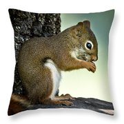Praying Squirrel Throw Pillow
