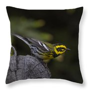 Pre-launch Throw Pillow