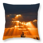 Pre Sunset Sky With Saguaro Throw Pillow