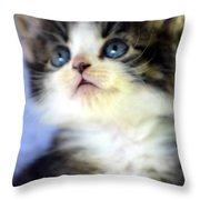 Precious Kitty Throw Pillow
