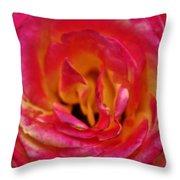 Precious Rose Throw Pillow