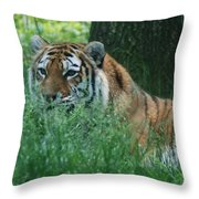 Predator In The Grass Throw Pillow
