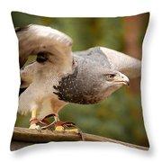 Predator's Raise Throw Pillow