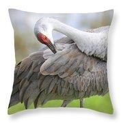 Preener Sandhill Crane Throw Pillow