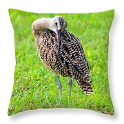 Preening Curlew Throw Pillow
