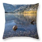 Preening Ducks At Silver Lake Throw Pillow